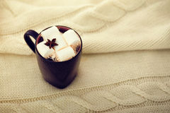 Cup of cocoa with marshmallow Royalty Free Stock Image