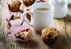 Cup cocoa with milk and homemade black berry muffins Stock Photo