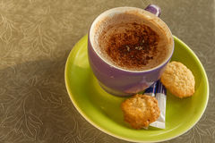 Cup of cocoa. A pale green saucer, two biscuits, drinks, white, sweet, cup, chocolate Royalty Free Stock Photo