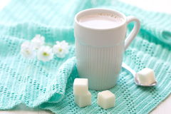 Cup of cocoa and sugar Royalty Free Stock Photography
