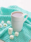 Cup of cocoa and sugar Royalty Free Stock Images