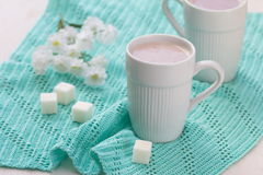 Cup of cocoa and sugar Stock Photos