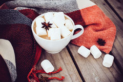 Cup of cocoa and warm plaid Royalty Free Stock Photography