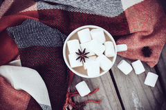 Cup of cocoa and warm plaid Stock Photos
