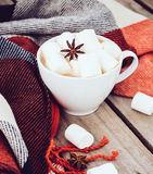 Cup of cocoa and warm plaid Royalty Free Stock Photo