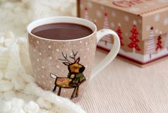 Cup of cocoa in woolen scarf. Christmas background. Cocoa in winter cup with reindeer, scarf and christmas box Stock Photography