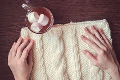 Cup of cocoa and woollens Stock Photos
