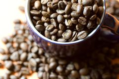 Cup of cofee macro royalty free stock image