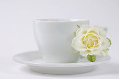 A cup of coffeу with white rose. A cup of coffeу or tea with white rose flower Royalty Free Stock Image