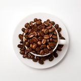 Cup and coffe beans. White cup filled with coffe beans Royalty Free Stock Images
