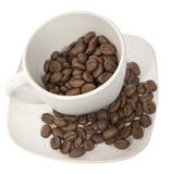 Cup with coffe beans Stock Images