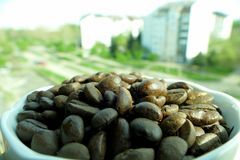 Cup of coffe full with beans. Cup of coffe full with coffe beans royalty free stock photo