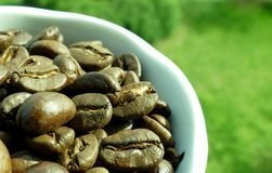 Cup of coffe full with beans. Cup of coffe full with coffe beans stock image