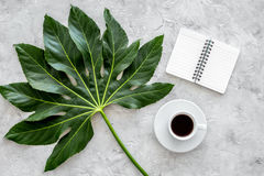 Cup of coffe near notebook and exotic palm leaf on light stone background top view Stock Images