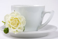 A cup of coffe with white rose. A cup of coffe or tea with white rose flower Stock Photos