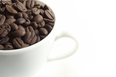 Cup of coffee. With seed on the white baclground royalty free stock photo