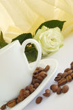 Cup of coffee. With brown seed and rose stock images