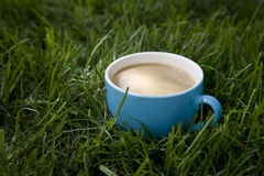 Cup of coffee. Standing in a grass Stock Image