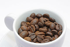 Cup of coffee. With coffee beans Royalty Free Stock Photo