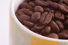 Cup of Coffee. Coffee beans in a mug Stock Photos