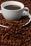 Cup of coffee. White cup of coffee with coffee beans around royalty free stock photography