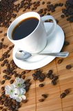 Cup of coffee. A white cup between brown coffee beans Royalty Free Stock Image