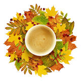 Cup of coffee with autumn decoration from dry colored leaves stock images