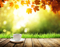 cup coffee and autumn Royalty Free Stock Photos