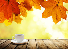 Cup coffee and autumn Royalty Free Stock Images