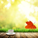 Cup coffee and autumn Stock Images
