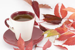 Cup of coffee and autumn leaves Stock Images