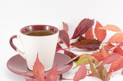 Cup of coffee and autumn leaves Royalty Free Stock Photo