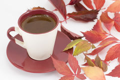 Cup of coffee and autumn leaves Stock Photography
