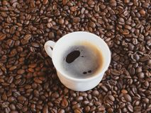 Cup of coffee on a background coffee grains royalty free stock image