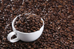 Cup of coffee bean Stock Photo