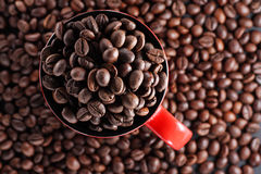 Cup with coffee beans. Red cup full of roasted brown coffee beans Stock Photo