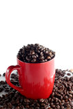 Cup with coffee beans. Red cup full of roasted brown coffee beans royalty free stock images