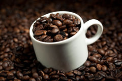 Cup with coffee beans Royalty Free Stock Photos