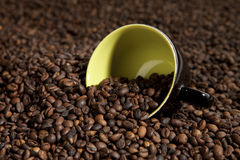 Cup in coffee beans. Nice cup in coffee beans royalty free stock image