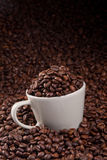 Cup of coffee beans Royalty Free Stock Photo