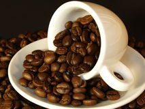 Cup and coffee beans. Fresh roasted coffee beans floating out of a white espresso cup Royalty Free Stock Image