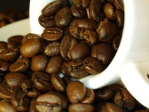 Cup and coffee beans. Fresh roasted coffee beans floating out of a white espresso cup Royalty Free Stock Images