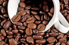 Cup of coffee on beans Stock Image