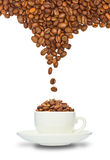 Cup and coffee beans Stock Image