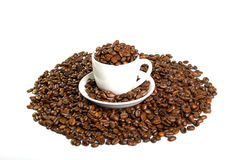 Cup with coffee beans Stock Image