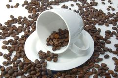 Cup with coffee beans. A shot of a with cup on brown coffee beans Stock Photography