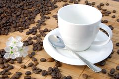 Cup with coffee beans. A shot of a with cup on brown coffee beans Royalty Free Stock Photo