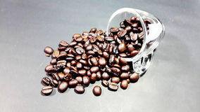 Cup ,Coffee beans Royalty Free Stock Photos