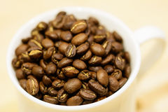 A cup with coffee beans. Brown roasted coffee beans in white cup on blured cappuchino like colored background. Image is focused on the beans, the cup is blured Stock Photos