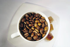 Cup of coffee beans with brown sugar. White cup of coffee beans with brown caramelized sugar on the white dish Stock Images